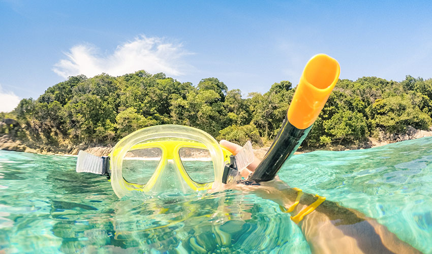 life for a cruise ship musician snorkling